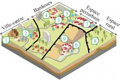 Espaces de l'urbanisation